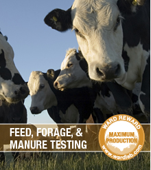 Feed, Forage and Manure